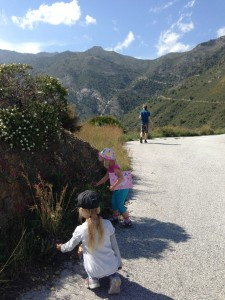 Picking up flowers on the road from Peña Escrita