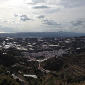Algarrobo views