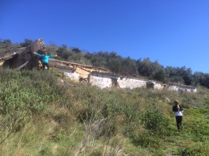 Ruins Rio de la Miel